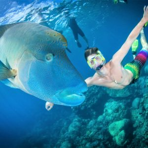 Great Barrier Reef Snorkelling Packages